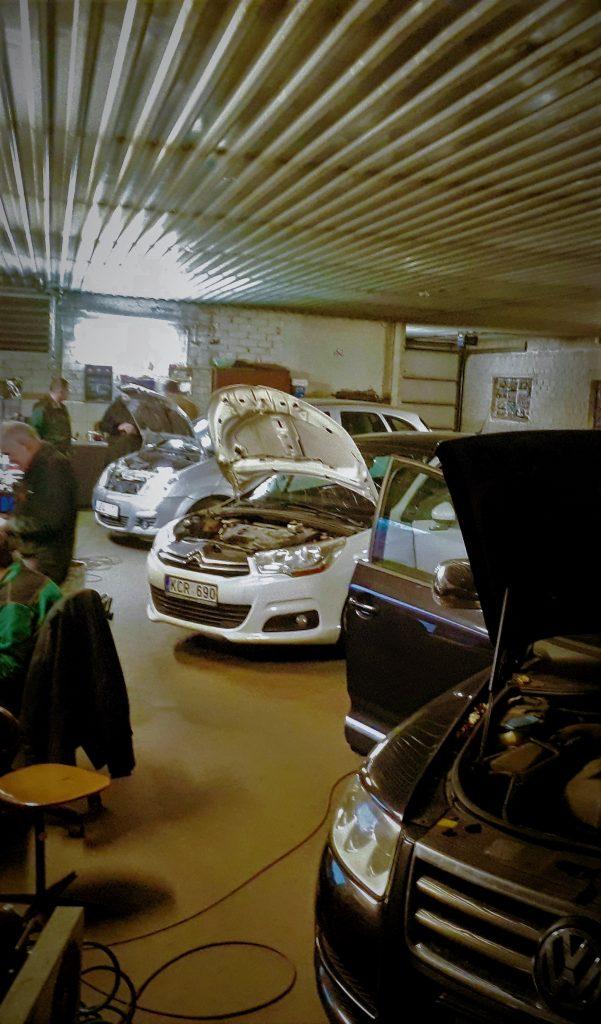 automobilių prekybos kompiuterinės sistemos)